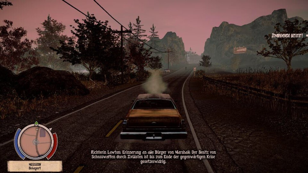 State of Decay 13